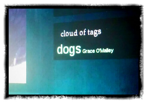 tag cloud: Grace O'Malley, dogs