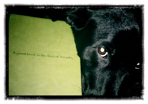 "Grcae the Dog next to a book cover embossed with the words, ""A good book is the best of friends."""